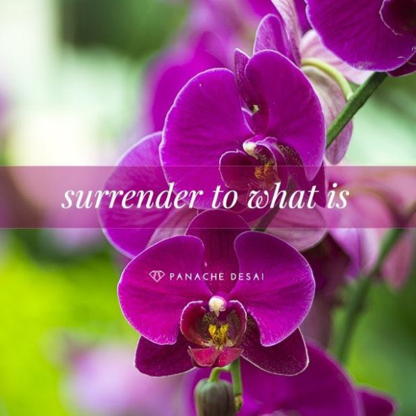 Surrender to...